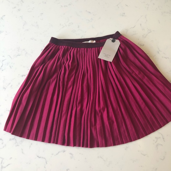 Zara Other - NWT Zara Skirt